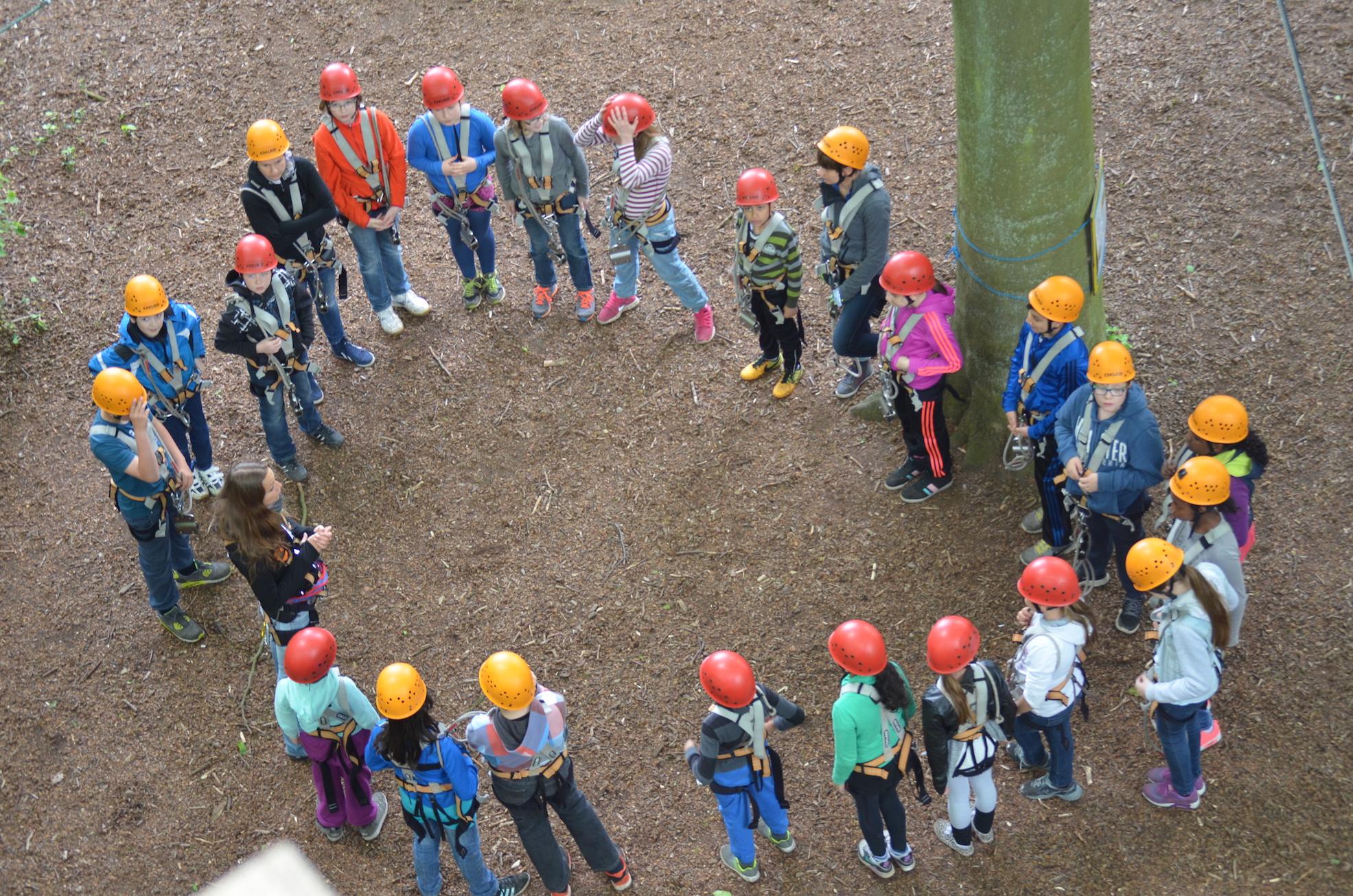 Gruppen Klettern in Hamburg-Sachsenwald und Rietberg