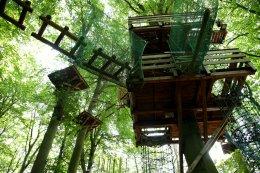Plattform Schnurstracks Kletterpark Hamburg-Sachsenwald