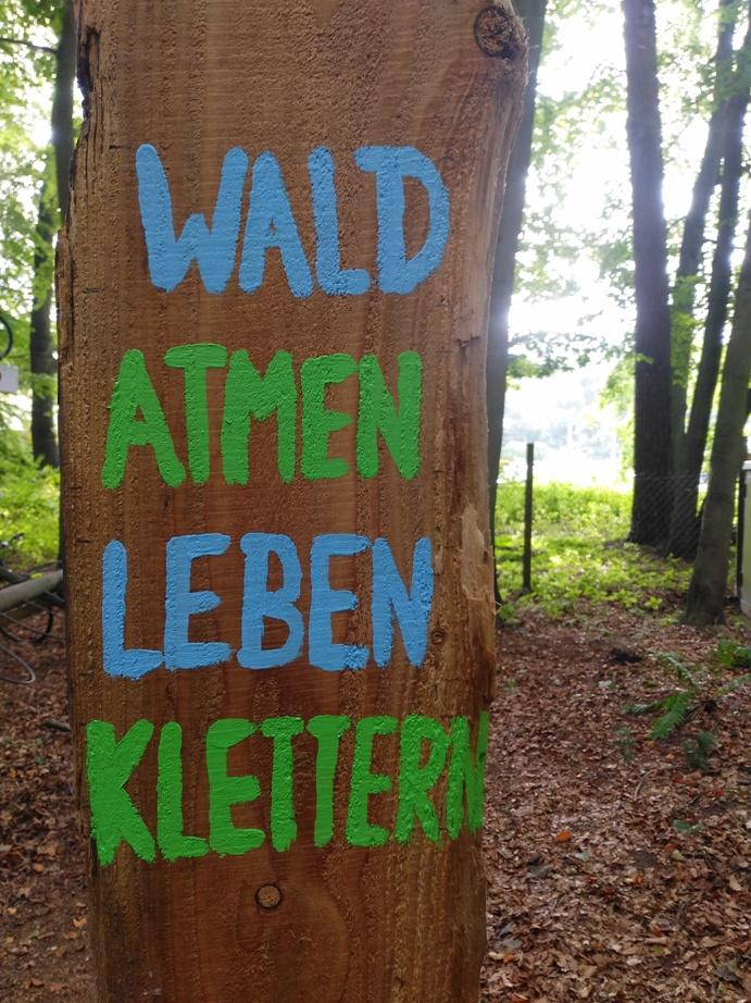 wald_atmen_leben_klettern nachhaltigkeit