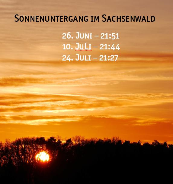 Sommernachtsklettern Sachsenwald schnurstracks Kletterpark Abendklettern
